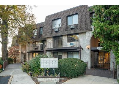 Westchester County Condo/Townhouse For Sale: 313 Kemeys Cove #313