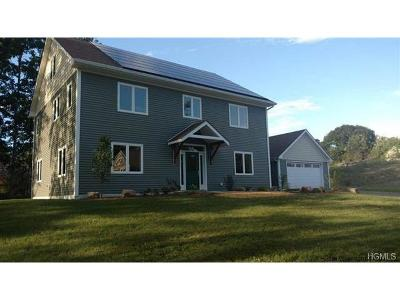 New Paltz Single Family Home For Sale: 10 Taylor Street