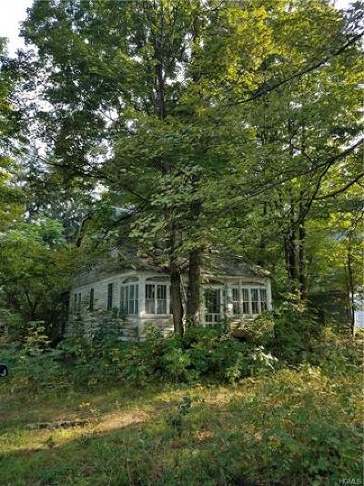 Dutchess County, Orange County, Sullivan County, Ulster County Single Family Home For Sale: 481 County Route 50