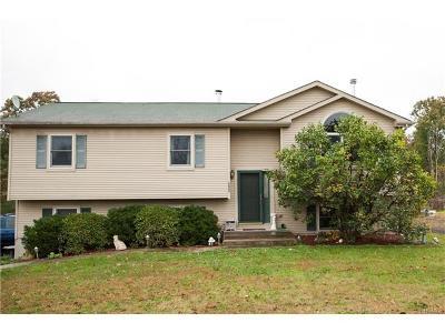 Goshen Single Family Home For Sale: 221 Knoell Road