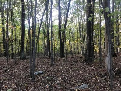 Orange County, Sullivan County, Ulster County Residential Lots & Land For Sale: Maples Road