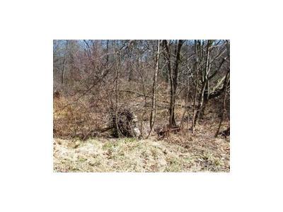 Lake Peekskill Residential Lots & Land For Sale: Reichert