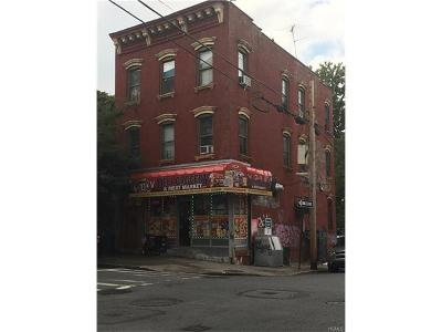 Bronx NY Multi Family 2-4 For Sale: $1,200,000