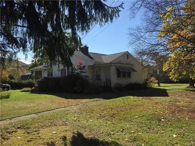 Westbrookville Single Family Home For Sale: 1694 Route 209
