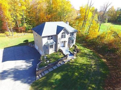 Bloomingburg Single Family Home For Sale: 258 Route 17k