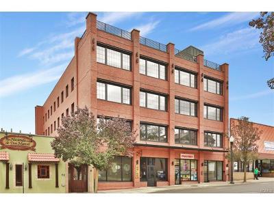 Commercial For Sale: 74 Lafayette Avenue