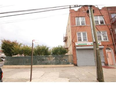 Bronx NY Multi Family 2-4 For Sale: $1,100,000