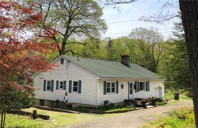Putnam County Single Family Home For Sale: 156 Shindagen Hill Road