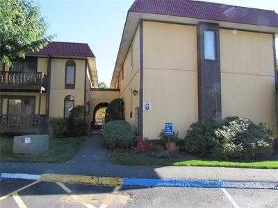 White Plains Condo/Townhouse For Sale: 6 Granada Crescent #4