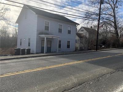 Bloomingburg Multi Family 2-4 For Sale: 109 Main Street