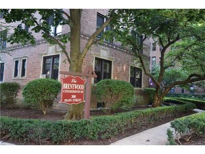 White Plains Condo/Townhouse For Sale: 300 Main Street #4G