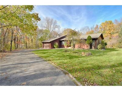 Middletown Single Family Home For Sale: 256 Mullock Road