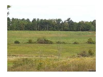 Delaware County Residential Lots & Land For Sale: 1 Rhinebeck Road