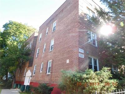Westchester County Condo/Townhouse For Sale: 41 Point Street #2D