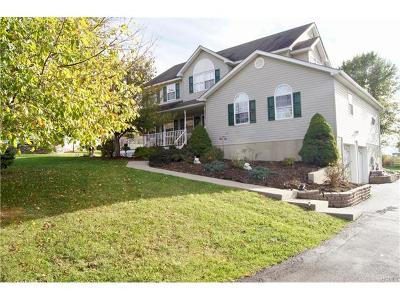 Chester Single Family Home For Sale: 28 Pewter Circle