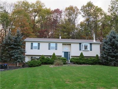 Goshen Single Family Home For Sale: 250 Reservoir Road