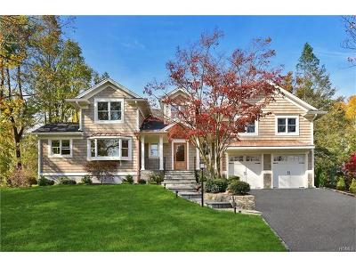 Rye Brook Single Family Home For Sale: 19 Dorchester Drive
