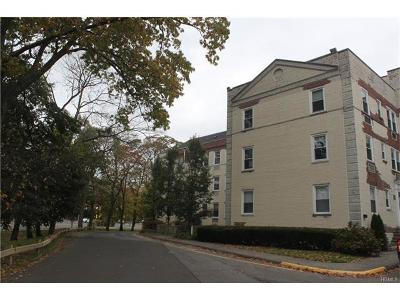 Connecticut Condo/Townhouse For Sale: 102 Summer Street #1B