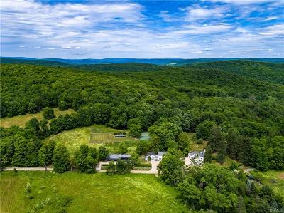 Dutchess County Single Family Home For Sale: 474-482 Deep Hollow Road