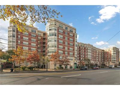 Westchester County Condo/Townhouse For Sale: 300 Mamaroneck Avenue #236