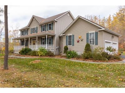 Lagrangeville Single Family Home For Sale: 1275 Noxon Road