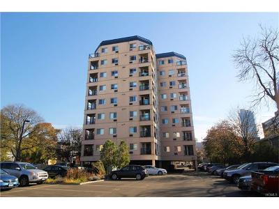 Connecticut Condo/Townhouse For Sale: 104 North Street #402