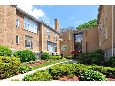 Ardsley Condo/Townhouse For Sale: 520 Ashford Avenue #19