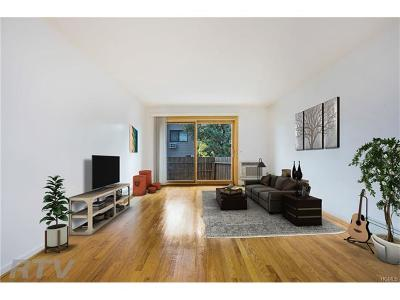 White Plains Condo/Townhouse For Sale: 19 Hillside Terrace #E