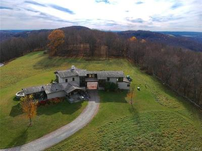 Orange County, Sullivan County, Ulster County Single Family Home For Sale: 226 Dyker Road