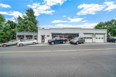 Commercial For Sale: 174 Bridge Street