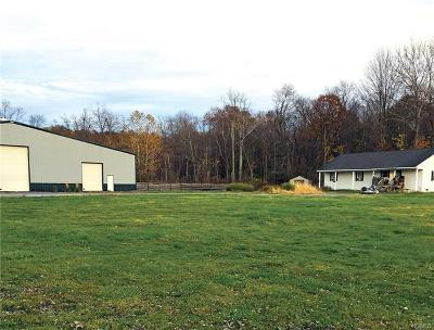 Dutchess County Rental For Rent: 300 Baxtertown Road #A