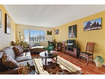 White Plains Condo/Townhouse For Sale: 21 Lake Street #5F