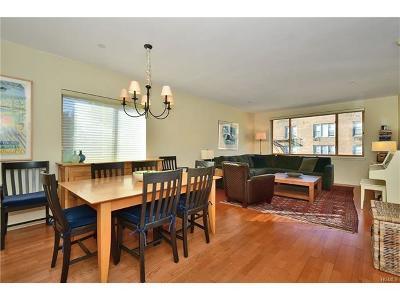 Bronx Condo/Townhouse For Sale: 3800 Blackstone Avenue #6S