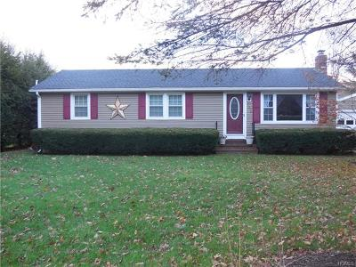 Dover Plains Single Family Home For Sale: 3376 Route 22