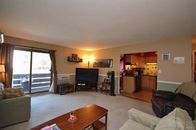 Valley Cottage Condo/Townhouse For Sale: 145 Sierra Vista Lane