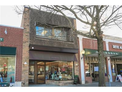 Mount Kisco Commercial For Sale: 53 South Moger Avenue