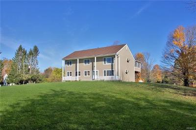 Dutchess County Single Family Home For Sale: 4 Foster Road
