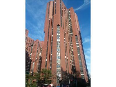 New York Condo/Townhouse For Sale: 1601 3rd Avenue #27E