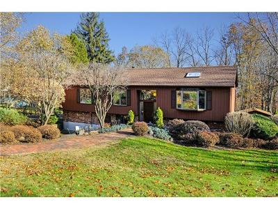 Westchester County Single Family Home For Sale: 43 Birch Brook Road