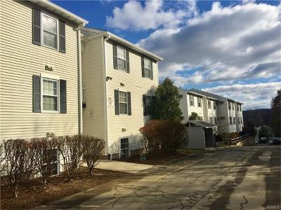 Harriman Condo/Townhouse For Sale: 18 Lexington Hill #1