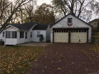 Single Family Home For Sale: 34 Teneyck Street
