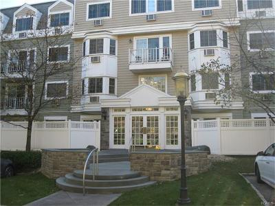 Westchester County Condo/Townhouse For Sale: 500 Pondside Drive #2G