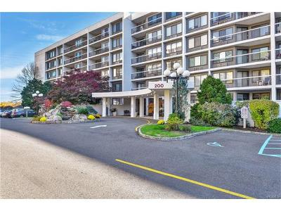 Westchester County Condo/Townhouse For Sale: 200 High Point Drive #PH2
