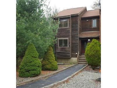 Barryville, Woodridge Single Family Home For Sale: 49 Alpine Drive