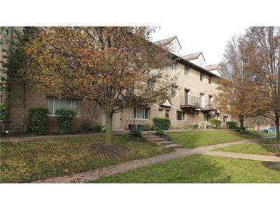 Nanuet Condo/Townhouse Sold: 3 Klint Court
