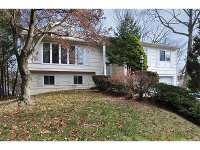 Dobbs Ferry Single Family Home For Sale: 49 Overlook Road