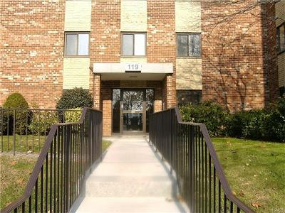 Yonkers Condo/Townhouse For Sale: 119 Dehaven Drive #235
