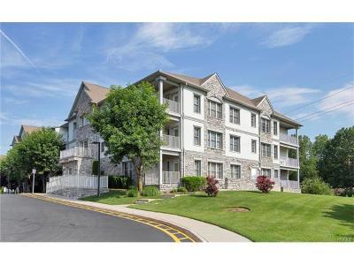 Rockland County Condo/Townhouse For Sale: 26 North De Baun Avenue #303