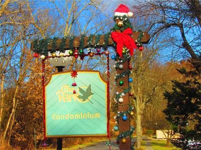 Dutchess County Rental For Rent: 13 Skyline Drive #16