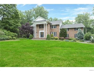 Rockland County Single Family Home For Sale: 10 Elaine Drive
